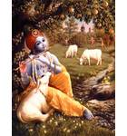 Krishna Plays His Flute Under a Mango Tree in Vrindavan