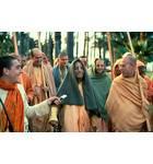 Prabhupada Says Something Funny on a Morning Walk