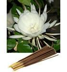 Night Queen Incense -- (225 gram pack)